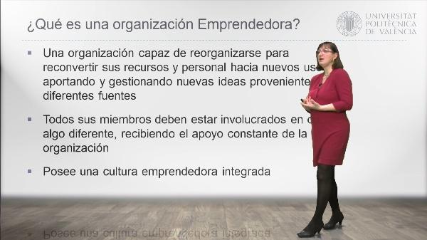 Organizaciones Emprendedoras