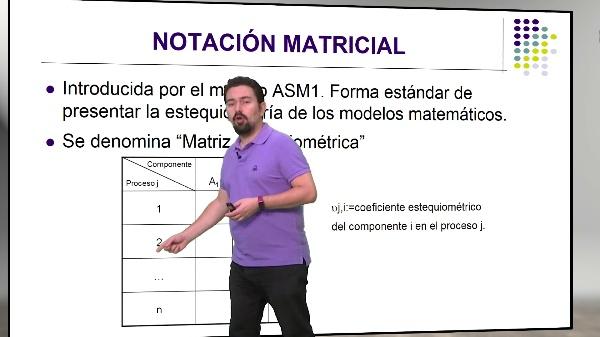 Notación matricial. Aplicación de las ecuaciones de continuidad para la determinación de los coeficientes estequiométricos