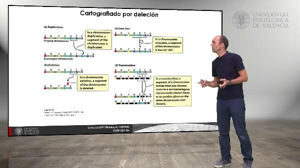 Técnicas especiales de cartografiado genético