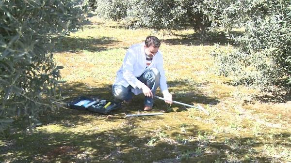 Cómo tomar muestras de suelos