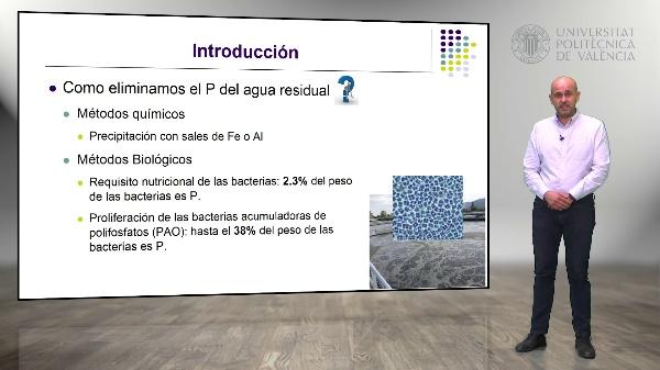 Metabolismo Simplificado de las Bacterias PAO en una EDAR