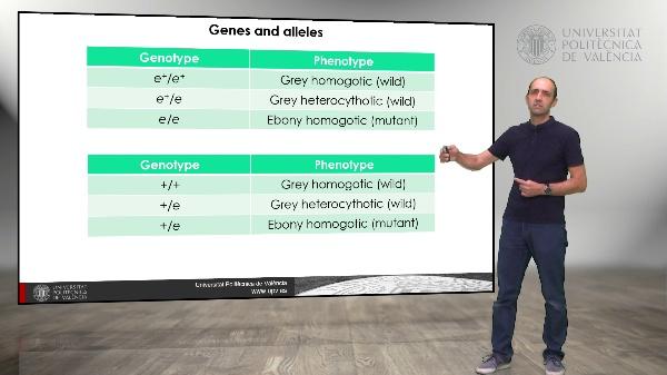 Extensions of mendelism, Penetrance, expressivity, lethal alleles and pleiotropy
