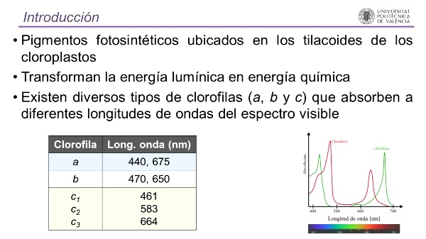 Determinación espectrofotométrica de clorofila: Método tricromático