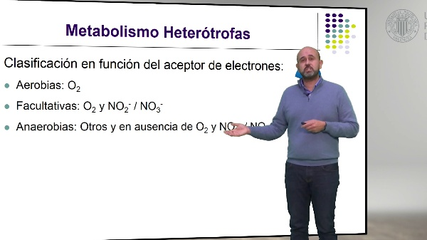 Metabolismo de las Bacterias Heterótrofas