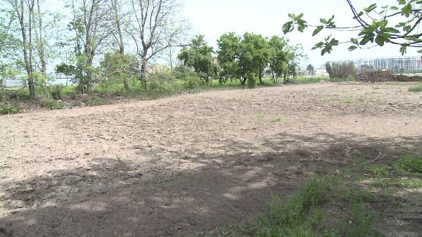 Cropland soil samplig