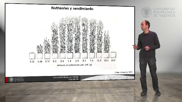 El rendimiento de los cultivos. Nutrientes y rendimiento
