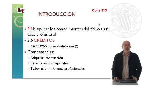 Máster en Consultoría de Integración de las TIC enlas Organizaciones - ConsITIO. Proyecto fin de título de especialista.