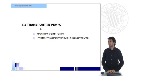Transport in PEMFC