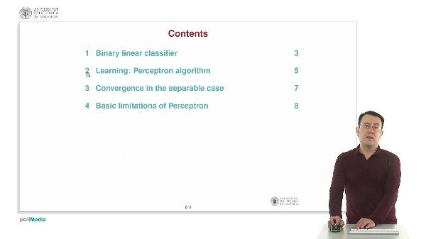 Perceptron  algorithm for binary classification