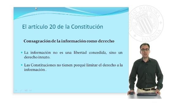 La libertad de expresion y la libertad de informacion en la constitucion española