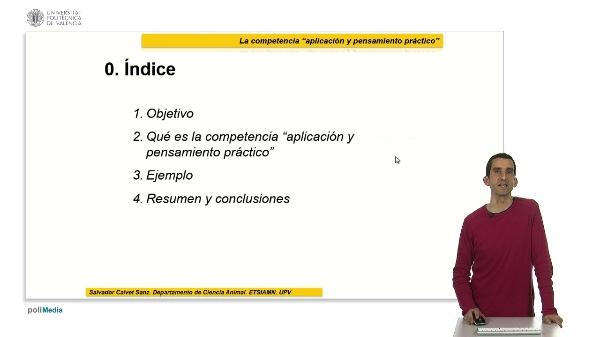 La competencia ¿Aplicación y pensamiento práctico¿ Ejemplo y reflexiones