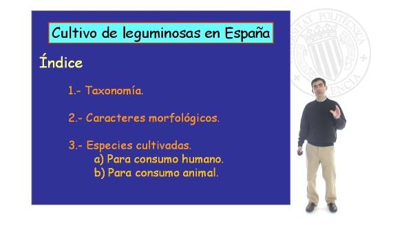 Cultivo de Leguminosas en España