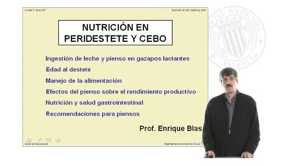 Nutricion en Peridestete y Cebo