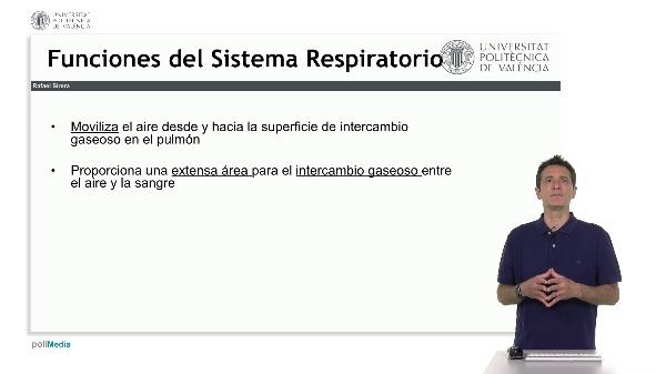 La Función Fisiológica del Sistema Respiratorio