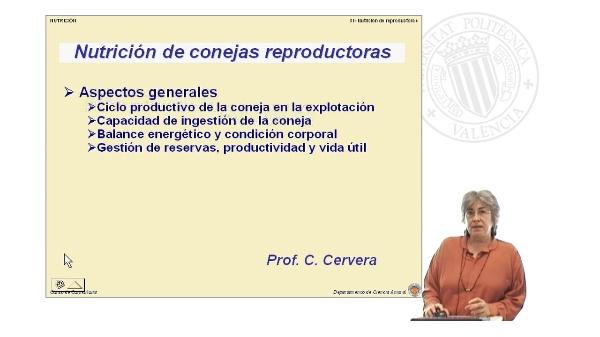 Nutrición de conejas reproductoras - Parte 1