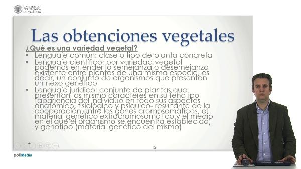 Obtenciones vegetales