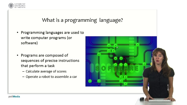 Programming Logic and Languages: basic concepts