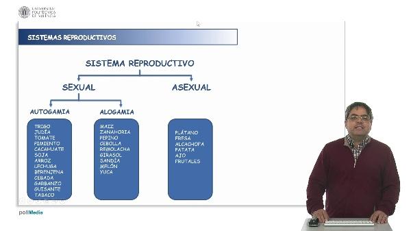 Sistemas Reproductivos en Plantas Autogamia Alogamia. Reproducción Vegetativa