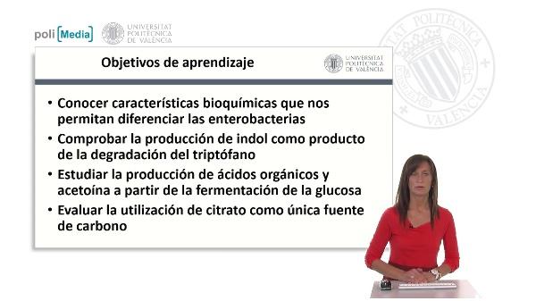 IMVIC: Indol, Rojo de metilo, Voges-Proskauer, Citrato