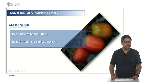 Objetivos de mejora de tomate de industria.