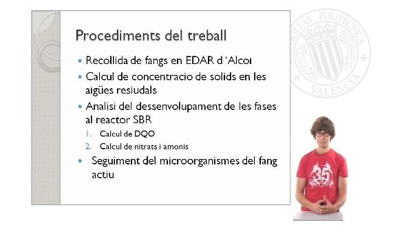 Estudi del tractament d'aigua residual en un SBR (Part II)