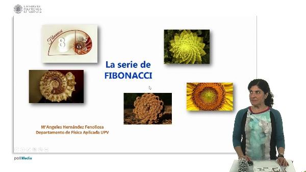 La serie de Fibonacci