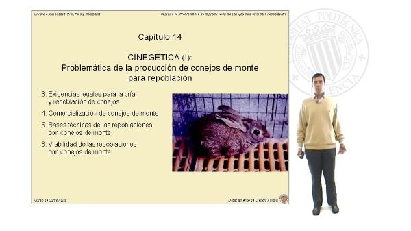 Problemática de la producción de conejos de monte para repoblación - Parte 2