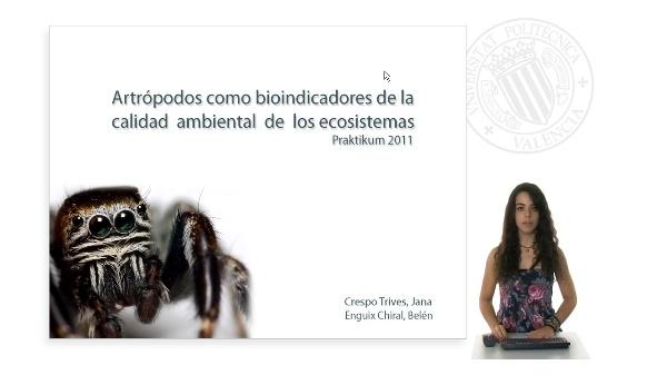 Artrópodos como indicadores de la calidad de los ecosistemas. Parte I