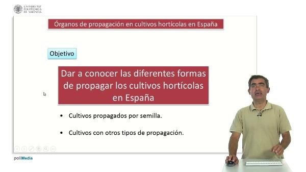 Órganos de Propagación en Cultivos Hortícolas en España