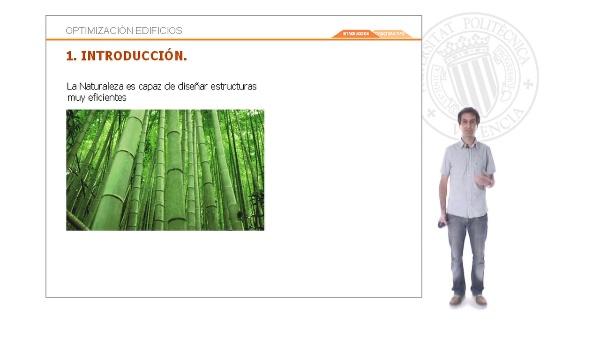Emulando estrategias de la naturaleza para diseñar estructuras de edificios optimizadas - Introducción