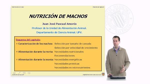 Nutrición de Machos - Parte 1