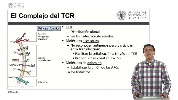 El complejo receptor de la célula T