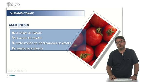 Mejora genética de la calidad en el tomate: mejora del gusto.