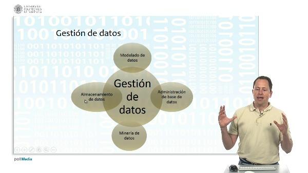 Bases de datos, propiedades y almacenamiento. Gestión de datos