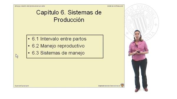 Sistemas de Producción - Parte 1