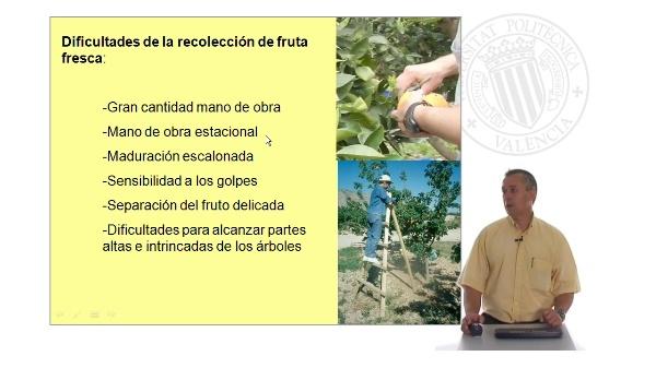 Sistemas de asistencia para la recolección de fruta fresca I