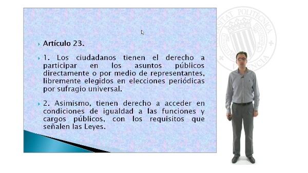 El artículo 23 de la Constitución