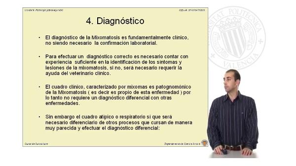 Mixomatosis - (Parte II)