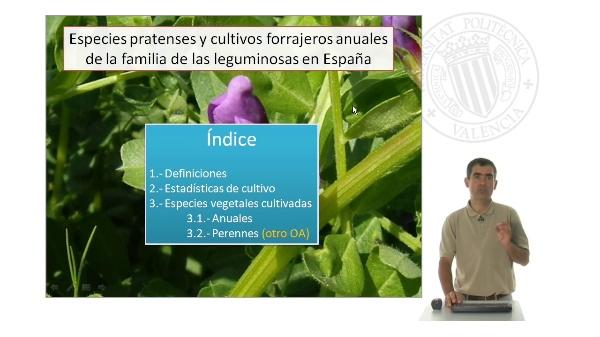 Especies pratenses y cultivos forrajeros anuales de la familia de las leguminosas en España