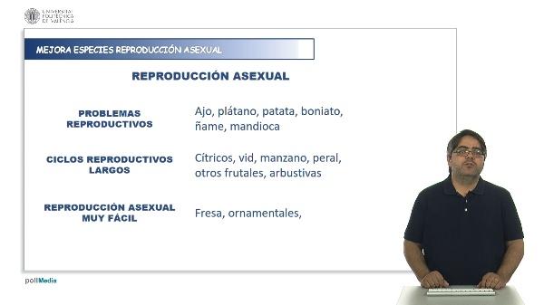 Mejora de especies de reproducción asexual