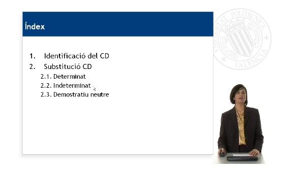 Bloc 5. Funcions (CD)