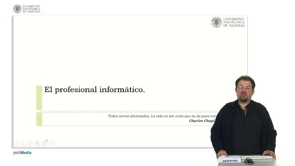 El profesional informático