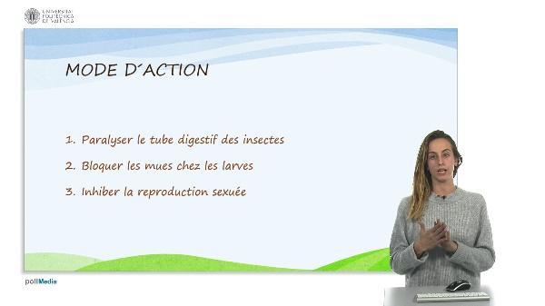 Insecticide naturel à base d¿huile de Neem (4)