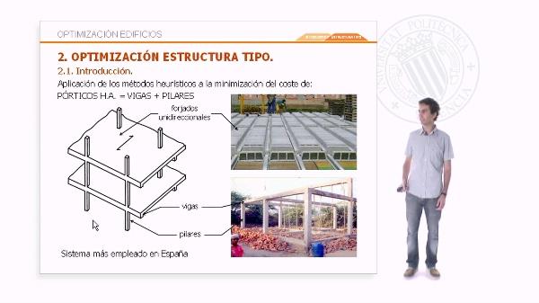 Emulando estrategias de la naturaleza para diseñar estructuras de edificios optimizadas - Optimización de una estructura tipo