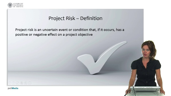Standards and project management: risk management