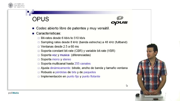 Opus codec