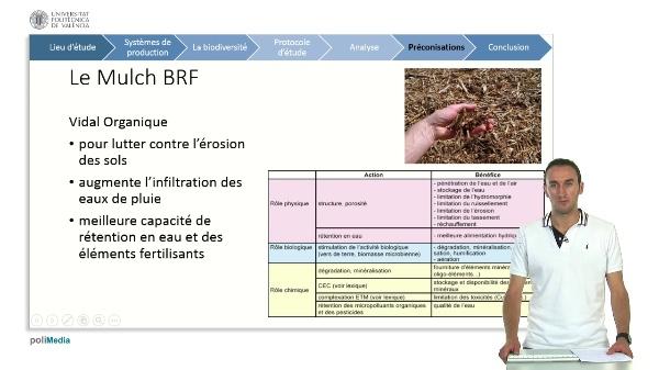 La biodiversite sur la commune de benitatxell (projet biomoscatell) 6