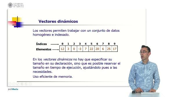 Vectores dinámicos en lenguaje C.