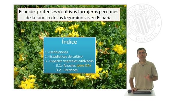 Especies pratenses y cultivos forrajeros perennes de la familia de las leguminosas en España