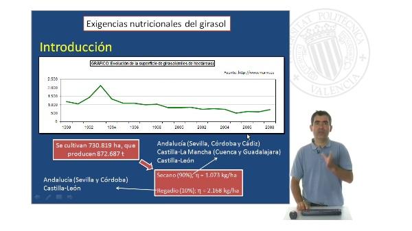 El girasol- Exigencias nutricionales